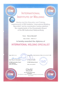 iiw - International Institute of Welding…